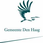 6 participatielessen uit Den Haag